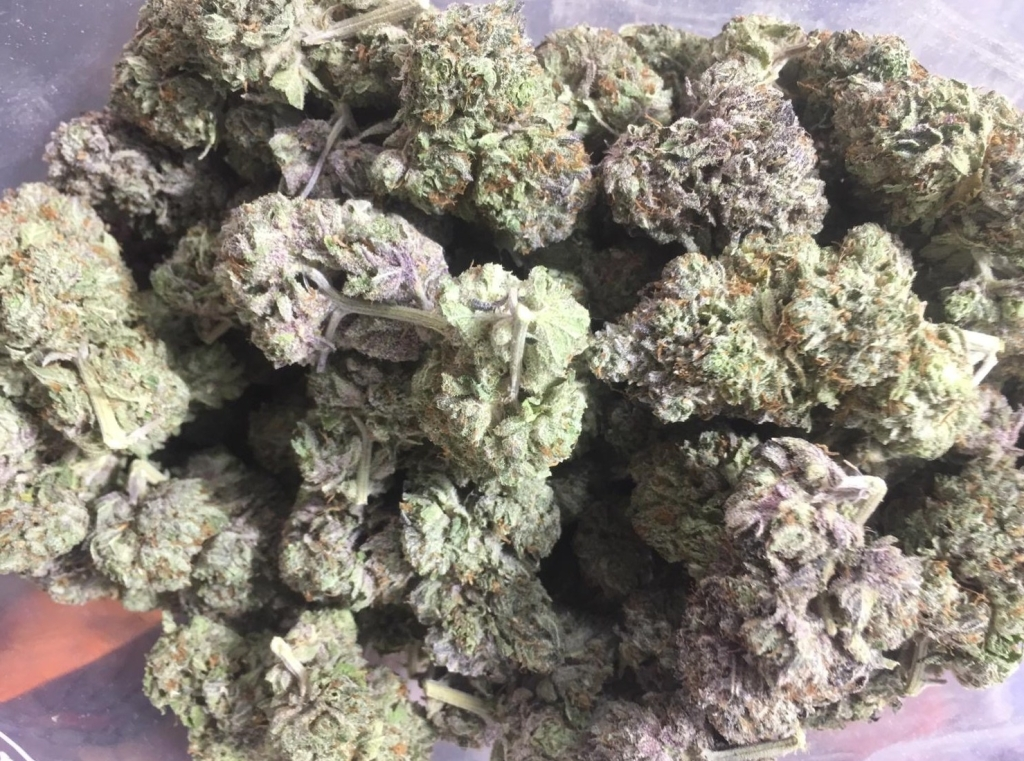 Cannabis, indica, hybrid, gorilla glue gg4